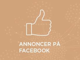 Husk midler til Facebook-annoncering